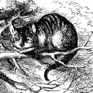 Gato de Chesire